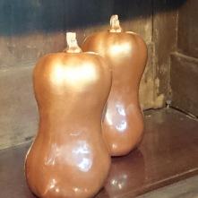 Butternut en chocolat. C'est une courge musquée qui est issue de la famille des cucurbitacées.